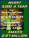 The Chestnut & Cedar Stock Report - Investment Handbook for Young Adults